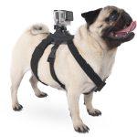 Action camera Pet Dog pov Harness